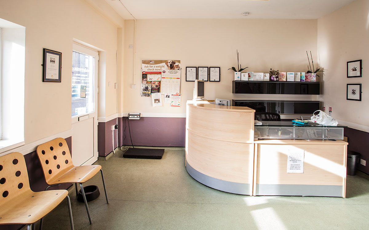 Valley Vets Caerphilly Veterinary Surgery Reception