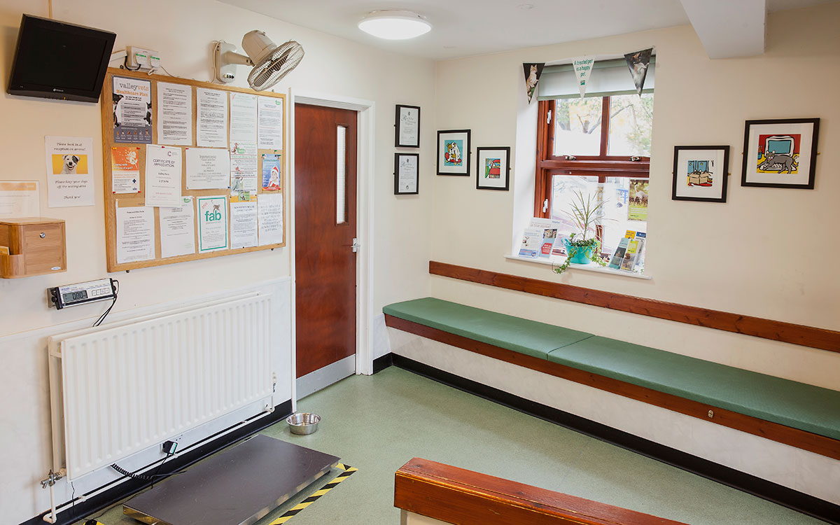 Valley Vets Ystrad Mynach Veterinary Hospital Reception