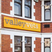 Valley Vets in Cardiff - Our Cardiff Surgery provides friendly, professional and efficient care for the cats, dogs, rabbits and other small pets in and around Cardiff and South Wales