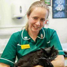 free cat weight clinics