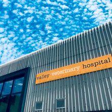 Valley Veterinary Hospital, Cardiff