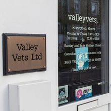 Valley Vets in Caerphilly