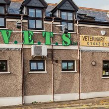 Valley Vets in Ystrad Mynach - Providing friendly, professional and efficient care for the cats, dogs, rabbits and other small pets at our Ystrad Mynach Veterinary Hospital